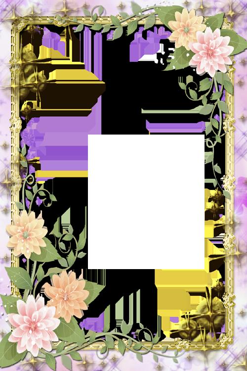 Цвет рамки картинки html 2