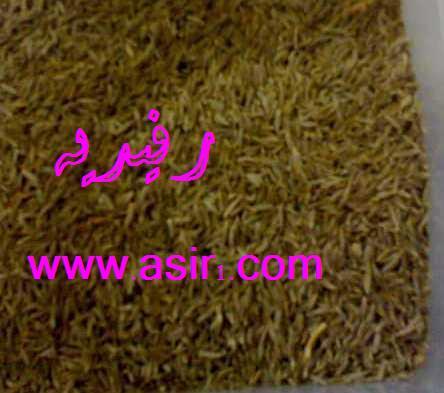 (طريقة مشروب القشر للنفاس بالصور hwaml.com_1295190871