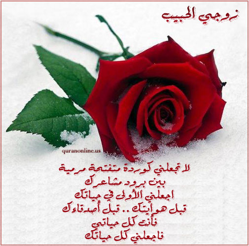 زوجه تستطع البوح بالكلام لزوجها تتفضل هنا hwaml.com_1303348465