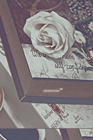 كل الاشياء تبدو اجمل حين اكون معك ~ للآيفون hwaml.com_1313896683