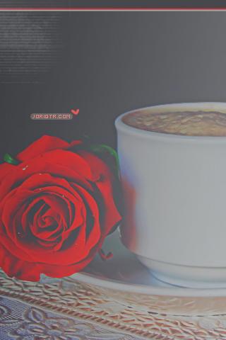 كل الاشياء تبدو اجمل حين اكون معك ~ للآيفون hwaml.com_1313896684