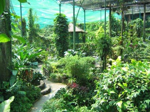 حديقة الفراشات 15 رينجت للشخص وهذه صور توضح مدخل هذه
