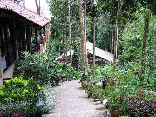 موقع الحديقة في العاصمة الماليزية ... والحديقة عبارة عن صورة