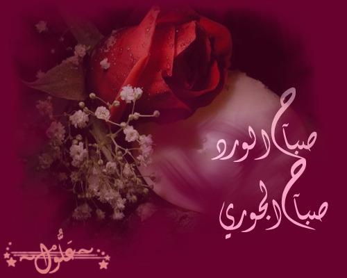 الرمان صباح مكتوب بماي الزعفران صباح