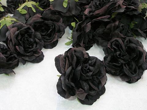 الورد الاسود الجمال الحزين