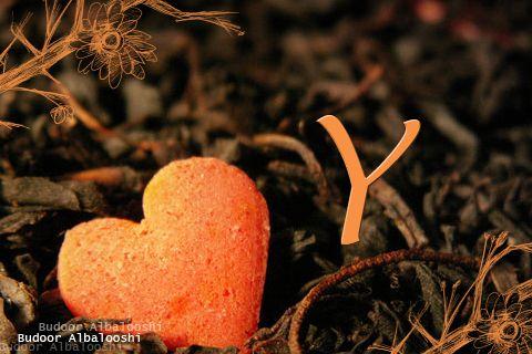 hwaml.com 1335889463 679 رمزيات قلوب , رمزيات قلوب 2013