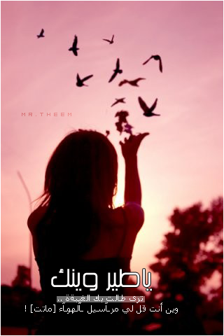 hwaml.com_1337617897