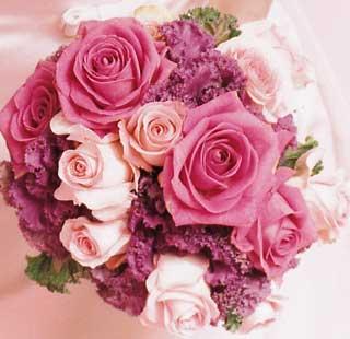 اطلالة مسائية مع الوروذ hwaml.com_1338184494