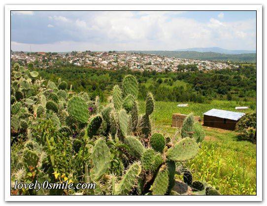 طبيعة أثيوبيا الجميلة 2013 أثيوبيا hwaml.com_1339339504_300.jpg