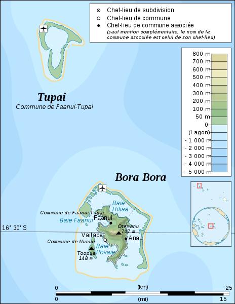 ����� ���� ������� 2014 Bora