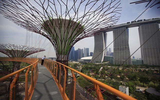 احدث حدائق سنغافورة حدائق الاشجار