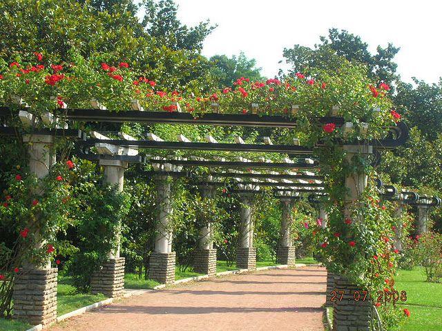 الطبيعة ليون ,احلى الامكان السياحية