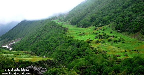 وادي الزهور في الهند السياحة فى الهند