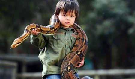 طفل بالثانية من عمره يصاحب افعى عملاقة