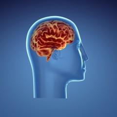 كيفية الحفاظ على الصحة النفسية