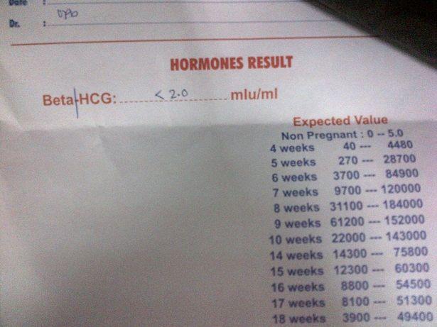 اللائحة مزدوج إكراه كم نسبة التحليل الهرموني للحمل Myfirstdirectorship Com