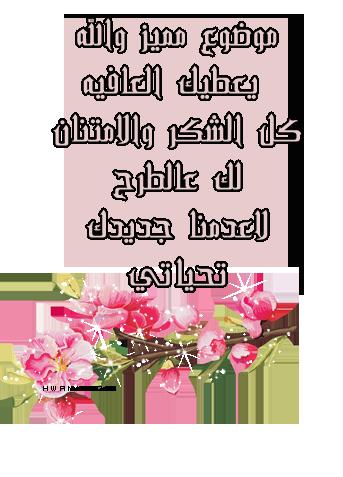 عصام ناجي سيسالم Hwaml.com_1389093871_219
